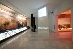 Museo de la viña y el vino de Navarra  (Olite, junio 2006)